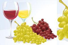 葡萄与葡萄酒矢量素材