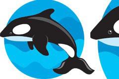跳跃的鲸鱼和大海背景矢量素材