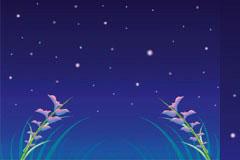 美丽的夜空矢量素材