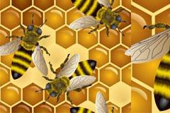 超清晰放大版蜜蜂矢量素材