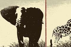 大象狮子长颈鹿3款野生动物矢量素材