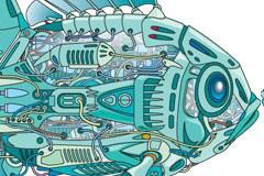 机器鱼的内部构造矢量素材