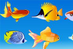 几款海洋动物矢量素材