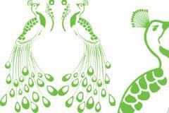 美丽的绿孔雀矢量素材