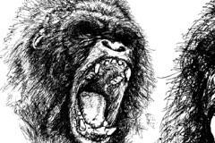 发怒的大猩猩素描矢量素材
