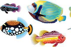几款色彩艳丽的海洋鱼类矢量素材