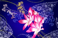 一款非常有特色的中国古典花纹背