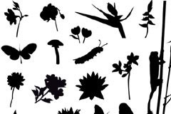 多款花卉昆虫大自然元素剪影矢量素材