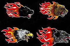 潮流火焰动物头像矢量素材