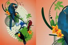 羽毛鲜艳的鹦鹉插画矢量素材