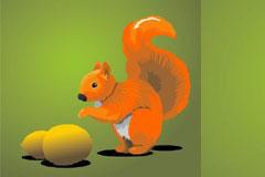 可爱的小松鼠和坚果矢量素材