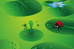 清新绿色荷叶瓢虫背景矢量素材