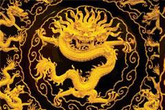 金龙中国传统吉祥图案矢量素材