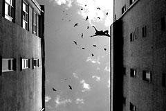12张值得推荐的黑白摄影照片
