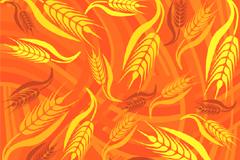 精美金色麦穗背景矢量素材