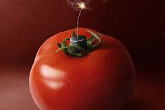 不干净的蔬菜完全可以变成杀人的武器