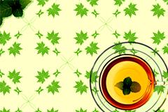 清新绿叶与透明茶杯背景矢量素材