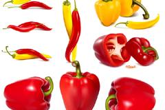 逼真绘制柿子椒和辣椒矢量素材
