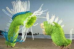 纽约艺术家杰森的气球艺术作品