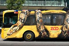 哥本哈根动物园车体广告