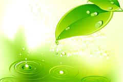 绿色清新绿叶和瓢虫背景矢量素材