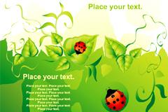 瓢虫绿叶露水装饰边框矢量素材