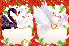 爱情主题浪漫红玫瑰天鹅矢量素材
