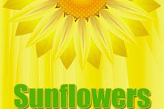 太阳花与蝴蝶矢量素材