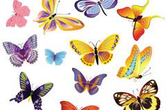 数款蝴蝶矢量素材