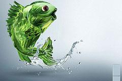 Aucma冰箱广告设计-Fresh Keepin