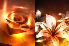 梦幻百合与玫瑰矢量素材