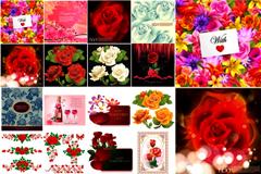 情人节玫瑰元素矢量素材