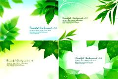 梦幻清新绿叶背景矢量素材