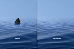 WWF公益广告:哪边更可怕?