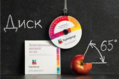 俄国小学品牌设计