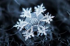 让人惊叹的雪花微距摄影
