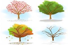 四季转换树木彩绘矢量素材