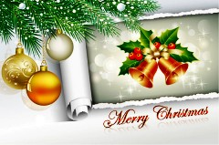 精美圣诞装饰矢量素材