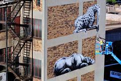 墙壁涂鸦——非洲大迁徙