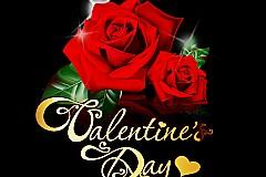 情人节浪漫玫瑰矢量素材