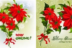 圣诞花卉矢量素材