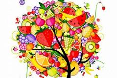 彩色创意水果树矢量素材