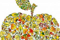美丽树叶之果矢量素材
