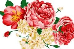 高雅手绘花卉矢量素材