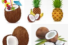 热带水果矢量素材