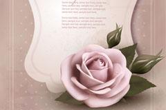 怀旧玫瑰装饰卡片矢量素材