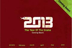 创意2013蛇年日历矢量素材