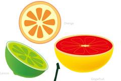 美味水果矢量素材