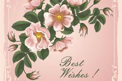 粉色花卉祝福卡片矢量素材