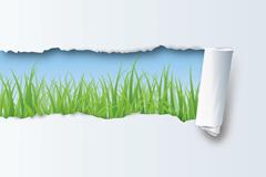 撕纸草地背景矢量素材